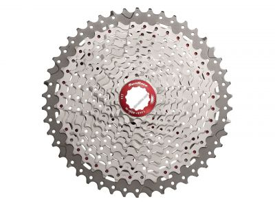 Cassette SunRace MX3 10V 11-46 dents Champagne