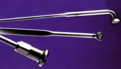 Rayon M 2x250 mm en inox Argent